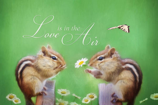 Chippy Poster featuring the photograph Love Is In The Air by Lori Deiter