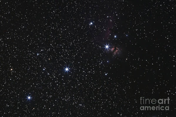 Flame Nebula Poster featuring the photograph Orions Belt, Horsehead Nebula And Flame by Luis Argerich