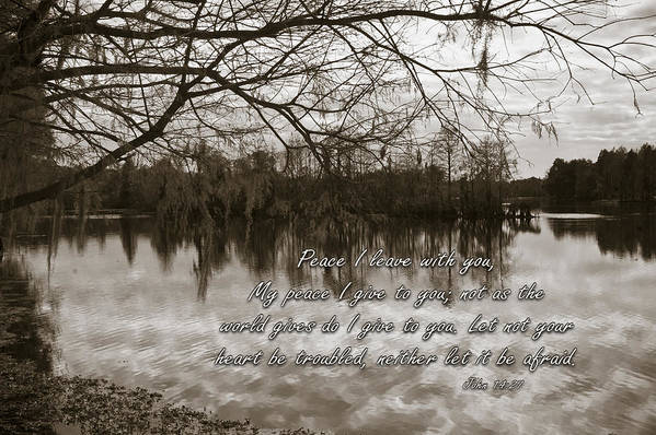 Landscape Poster featuring the photograph Peace I Leave With You by Carolyn Marshall