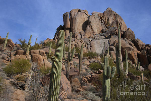 Pinnacle Peak Poster featuring the photograph Pinnacle Peak Landscape by James BO Insogna