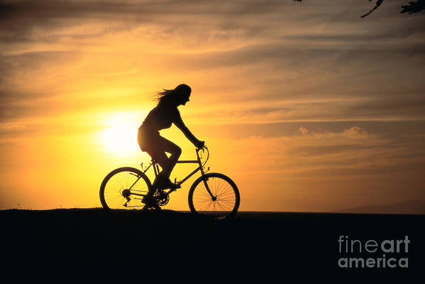 Athletic Sports Art Poster featuring the photograph Riding At Sunset by Dave Fleetham - Printscapes