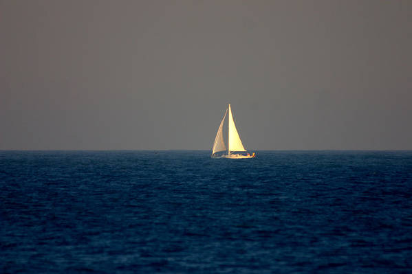 Landscape Poster featuring the photograph Sailing The Blue by Brad Scott