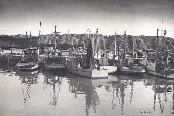 Shrimp Boats Poster featuring the photograph Shrimp Boats Mosquito Fleet by Fred Jinkins