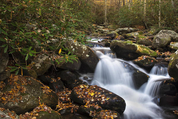 Waterfall Poster featuring the photograph Smokies Stream In Autumn by Andrew Soundarajan
