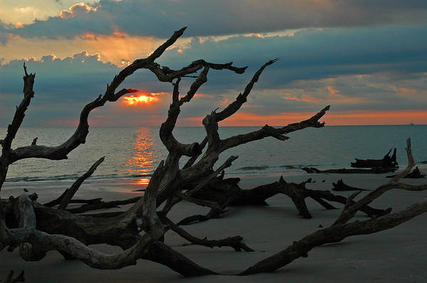 Driftwood Beach Poster featuring the photograph Sunrise At Driftwood Beach 2.2 by Bruce Gourley