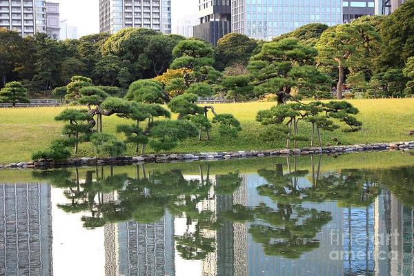 Japan Poster featuring the photograph Tokyo Trees Reflection by Carol Groenen