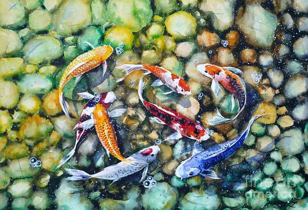 Koi Poster featuring the painting Eight Koi Fish Playing With Bubbles by Zaira Dzhaubaeva
