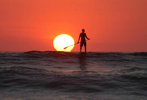 Paddle Boarding Poster featuring the photograph Paddle Board Sunset by Nathan Miller