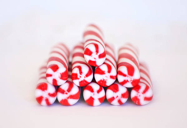 Christmas Card Art Poster featuring the photograph Peppermint Twist - Candy Canes by Kim Hojnacki