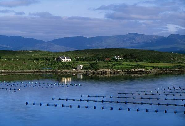 Beara Poster featuring the photograph Beara, Co Cork, Ireland Mussel Farm by The Irish Image Collection
