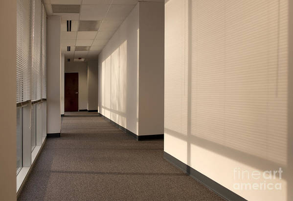 Airy Poster featuring the photograph Hallway Of An Office Building by Will & Deni McIntyre