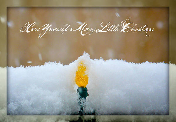 Season's Greetings Poster featuring the photograph Have Yourself A Merry Little Christmas by Lisa Knechtel