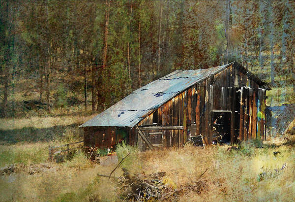 Barn Poster featuring the photograph Yesteryear Shed 2 by Dale Stillman