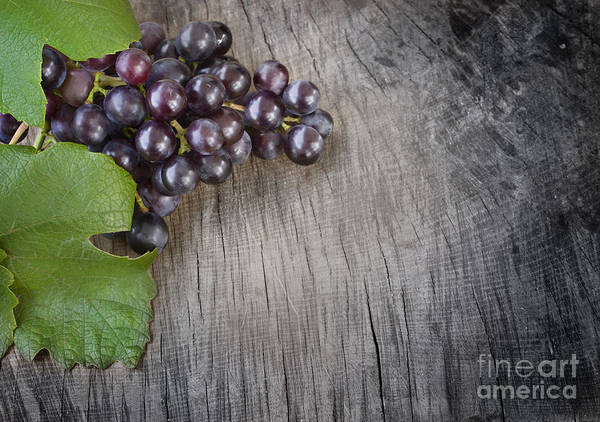 Crop Poster featuring the photograph Black Grapes by Mythja Photography