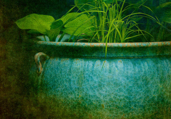 Pot Poster featuring the photograph Gardenscape by Amy Weiss