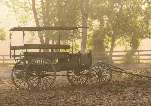 Savad Poster featuring the photograph Wagon - Abe's Buggie by Mike Savad