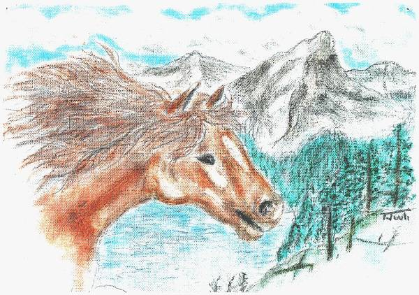 Horse Poster featuring the pastel Wild And Free by Shaunna Juuti