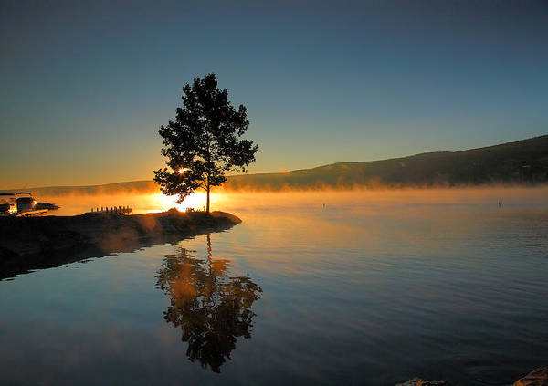 Tree Poster featuring the photograph Witness To The Dawn II by Steven Ainsworth