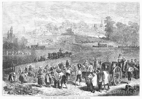 1871 Poster featuring the photograph France: Wine Harvest, 1871 by Granger