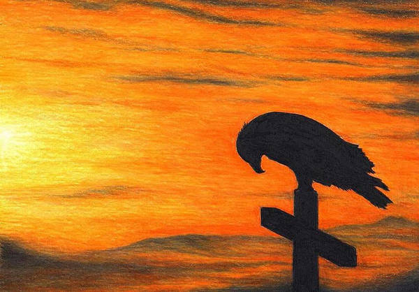 Art Poster featuring the drawing Bird Of Pray by Don McMahon
