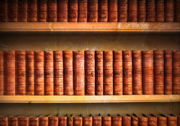 Abundance Poster featuring the photograph Old Library by Tom Gowanlock