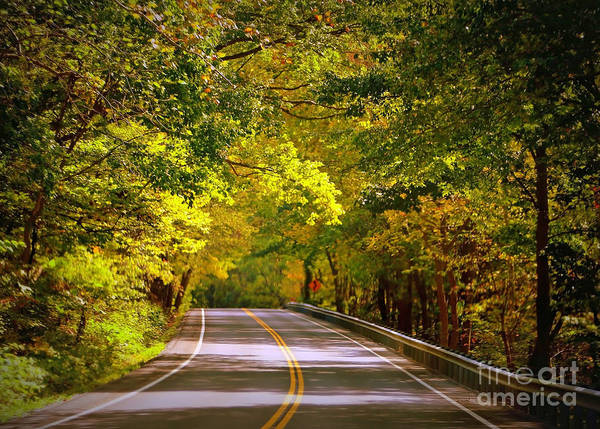 Autumn Road Poster featuring the photograph Autumn Road by Carol Groenen