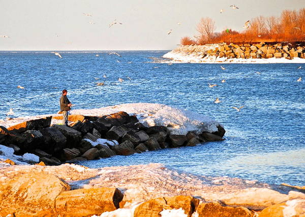 Cove Poster featuring the photograph Fishermans Cove by Frozen in Time Fine Art Photography