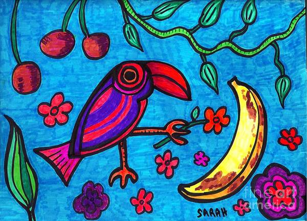 Bird Poster featuring the drawing Little Toucan by Sarah Loft