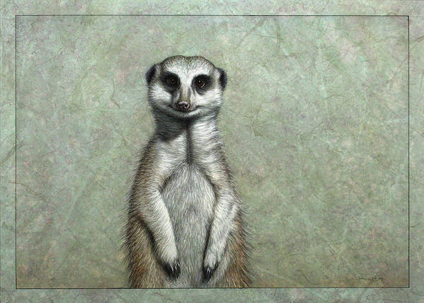 Meerkat Poster featuring the painting Meerkat by James W Johnson