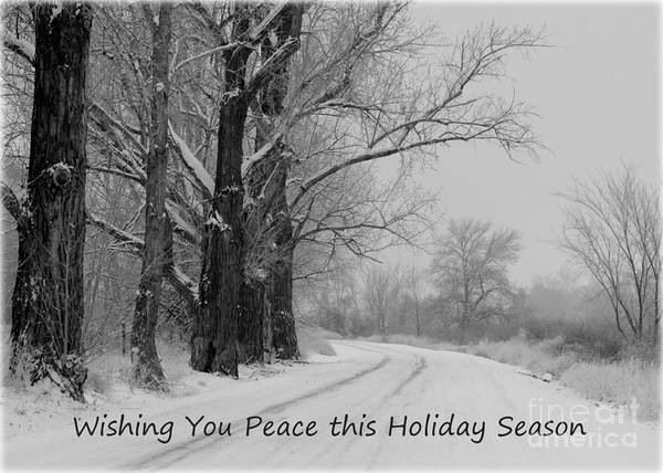 Winter Poster featuring the photograph Peaceful Holiday Card by Carol Groenen