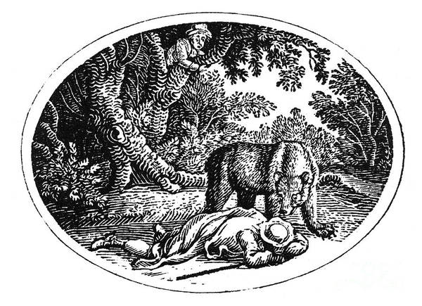 19th Century Poster featuring the photograph Bewick: Man And Bear by Granger