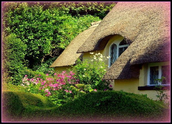 Selworthy Poster featuring the photograph Thatched Cottage With Pink Flowers by Carla Parris