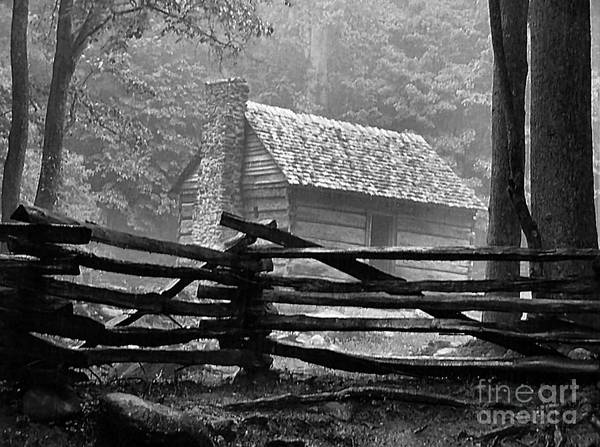 Log Cabins Poster featuring the photograph Cabin In The Fog by Julie Dant