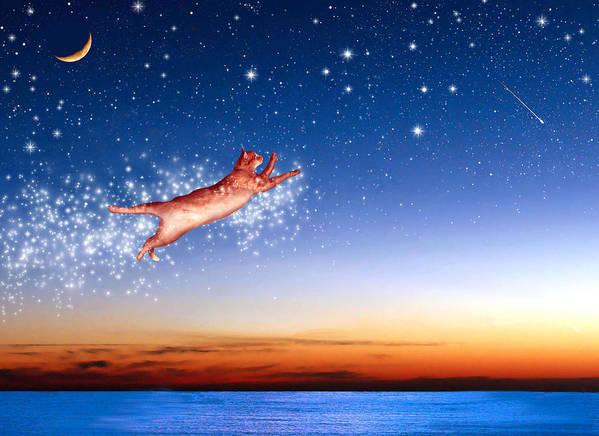 Constellations Poster featuring the digital art Flight To Sagittarius by Kathleen Horner