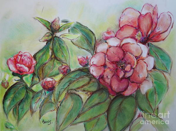 Spring Flowers Poster featuring the painting Spring Flowers Wet With Dew Drops Original Canadian Pastel Pencil by Aeris Osborne