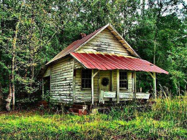 Abandoned Housese Poster featuring the photograph Old Florida Vi by Julie Dant