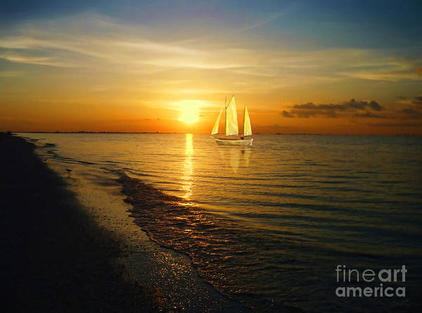Sailing Poster featuring the photograph Sailing by Jeff Breiman