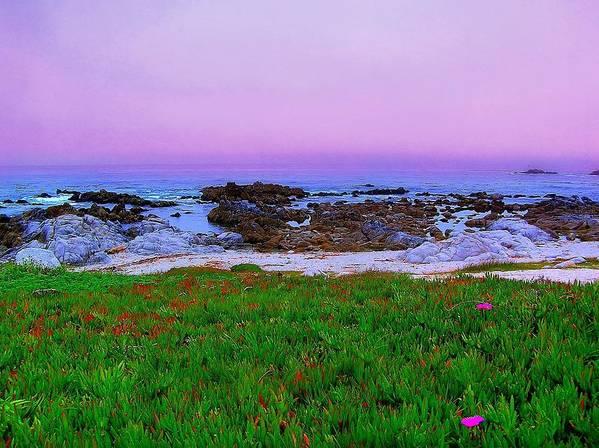 California Coast Poster featuring the photograph California Coast by Jen White