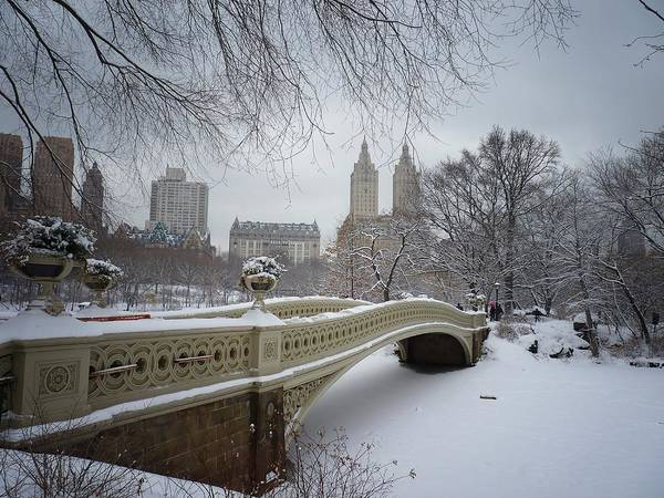 Landscape Poster featuring the photograph Bow Bridge Central Park In Winter by Vivienne Gucwa