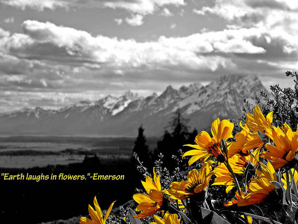 Ralph Waldo Emerson Poster featuring the photograph Earth Laughs In Flowers by Dan Sproul