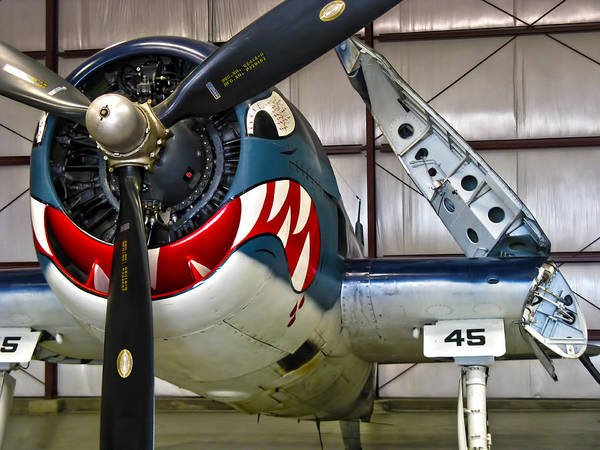 F6f Hellcat Poster featuring the photograph F6f Hellcat by Dale Jackson