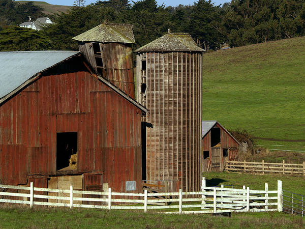 Barn Poster featuring the photograph Rural Barn by Bill Gallagher
