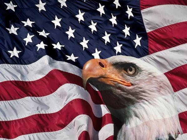 Eagle Flag Stars Stripes Pride Glory National Red White Blue Patriotism Old Nature Eagles American Us Usa Vereinigte Staaten Flagge States Honor United Freedom War Army Navy Patriotic Indepence Day War Power Strong U.s.a Poster featuring the digital art One Nation by Stefan Kuhn