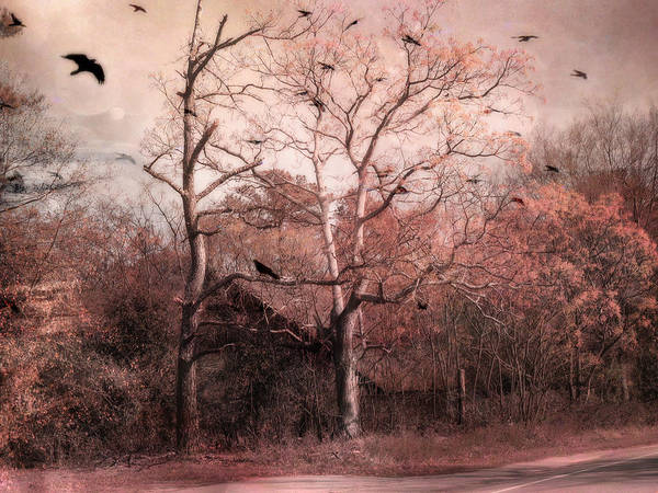 Barn Prints Poster featuring the photograph Abandoned Haunted Barn With Crows by Kathy Fornal