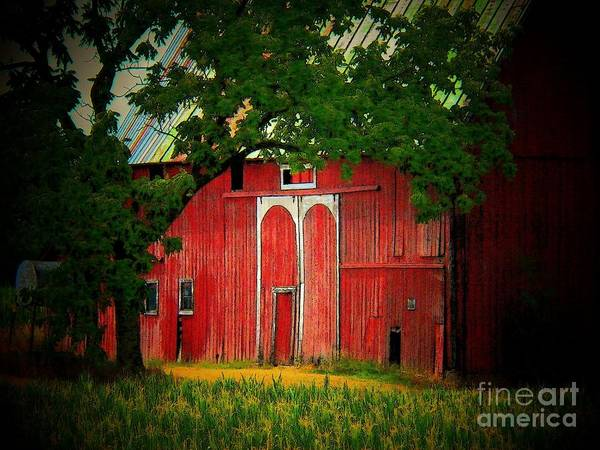 Barn Poster featuring the photograph Branch Over Barn Door by Joyce Kimble Smith