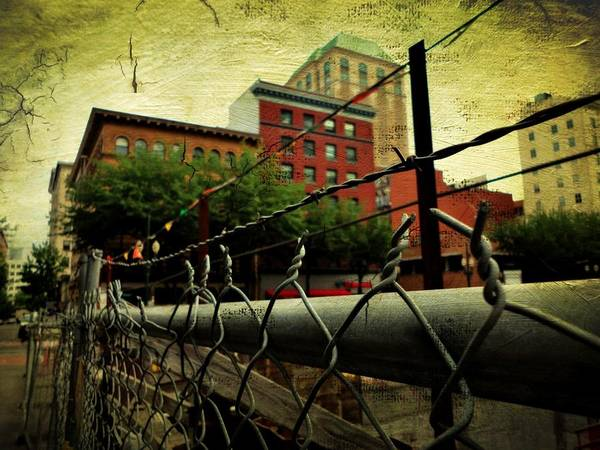 Poster featuring the photograph Down The Fence by Cathie Tyler