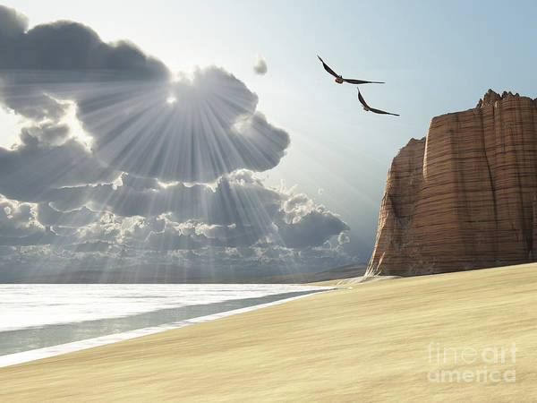 Beach Poster featuring the digital art Sunlight Shines Down On Two Birds by Corey Ford