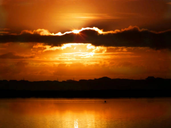 Sunrises Poster featuring the photograph The Magic Of Morning by Karen Wiles