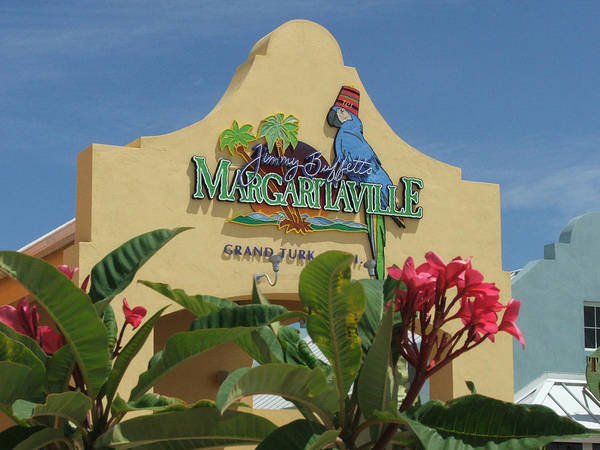 Margerita Poster featuring the photograph Daydreaming by Robert Meanor