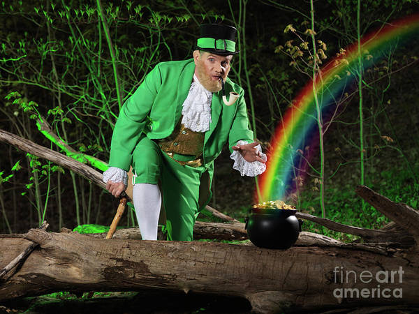 Leprechaun Poster featuring the photograph Leprechaun With Pot Of Gold by Oleksiy Maksymenko
